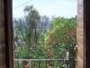 Vue de la cuisine sur la vallée et le laurier rose